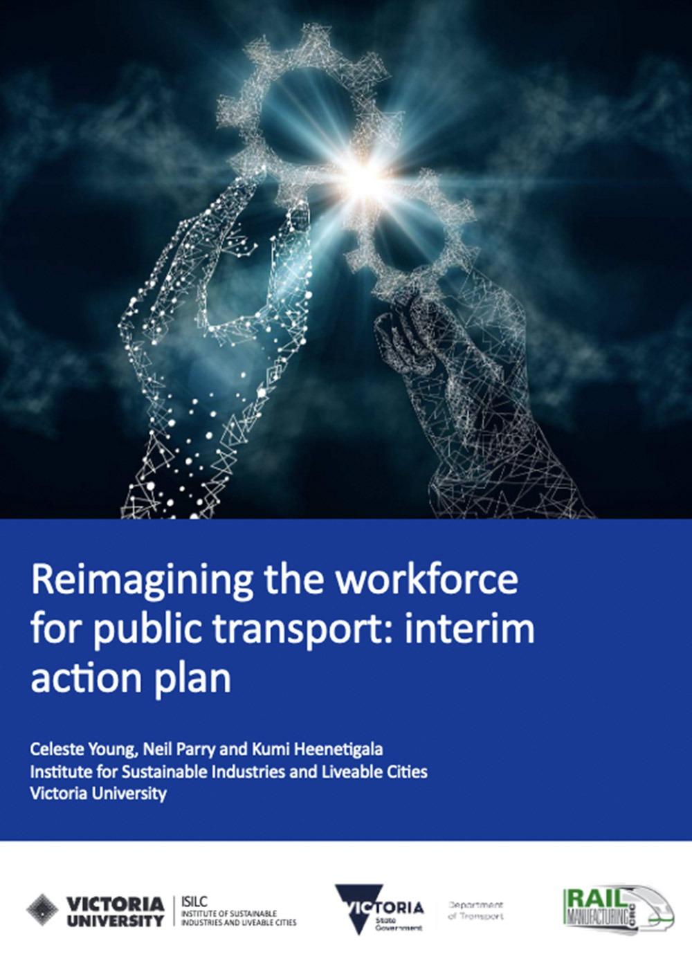 Interim action plan